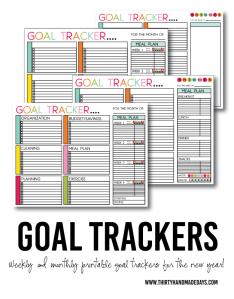 goaltrackers30daysblog